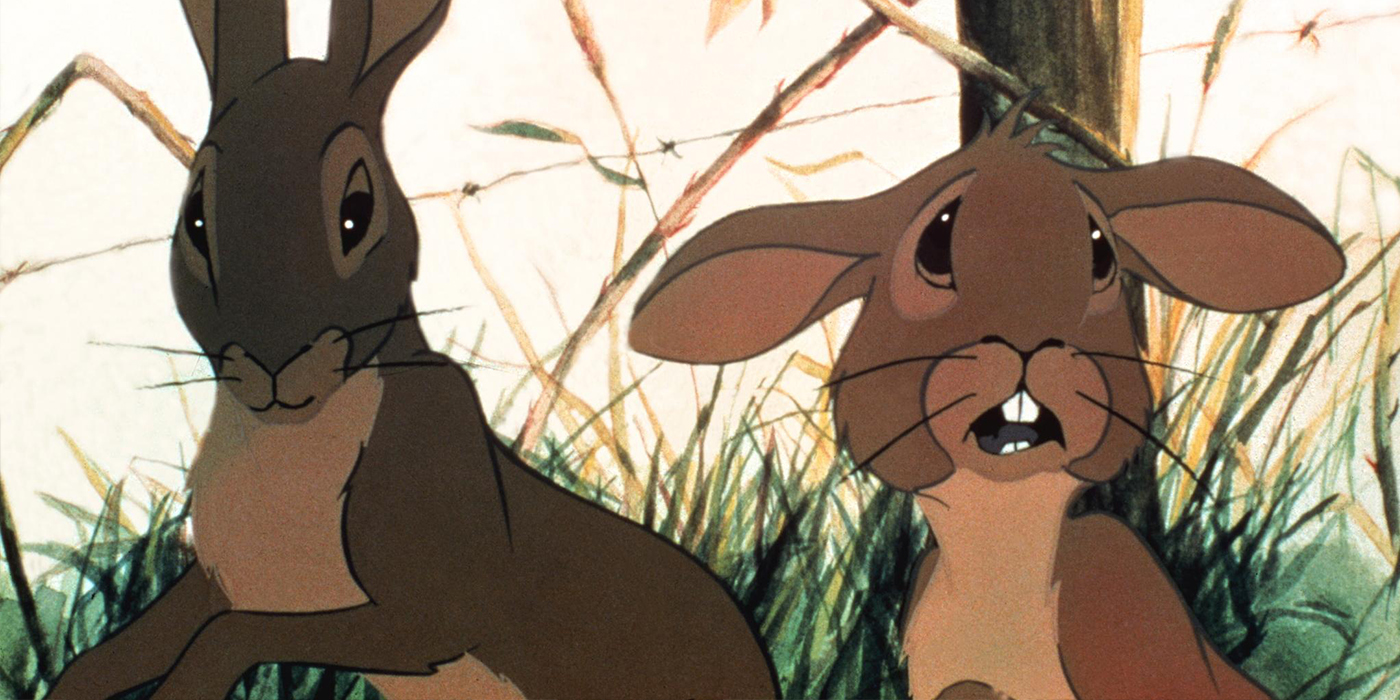a reflection of modern society in watership down by richard adams Watch movies and tv shows online watch from devices like ios, android, pc, ps4, xbox one and more registration is 100% free and easy.