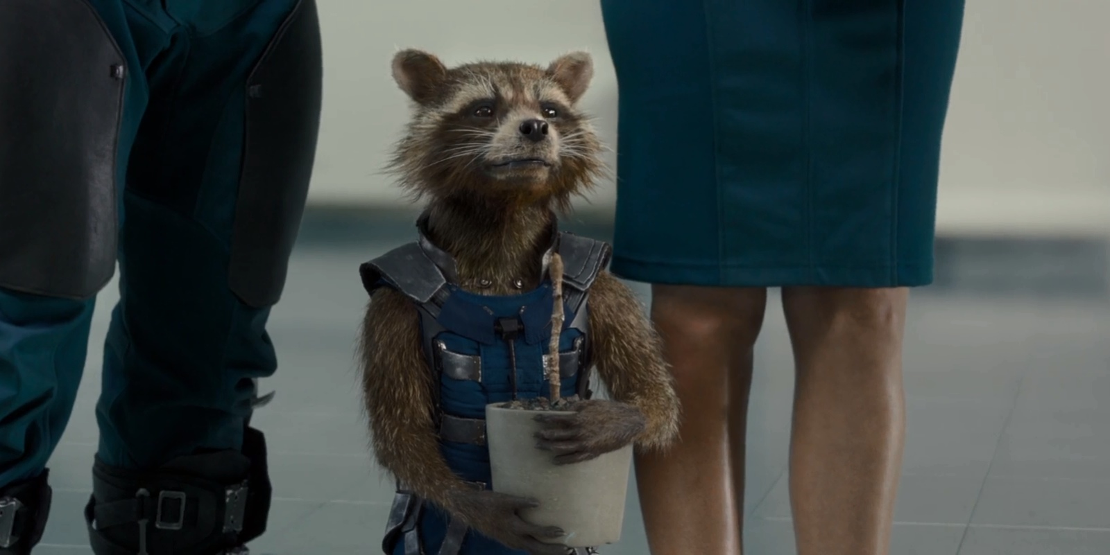 meet the guardians of galaxy groot and rocket