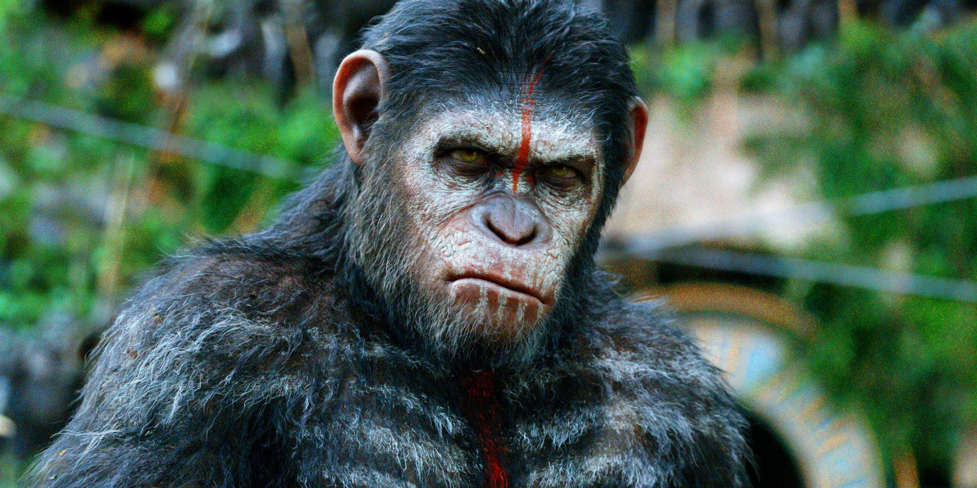 War for the Planet of the Apes Gets an Official Synopsis