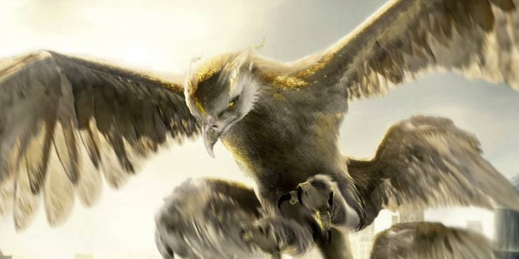 Image result for fantastic beasts and where to find them thunderbird