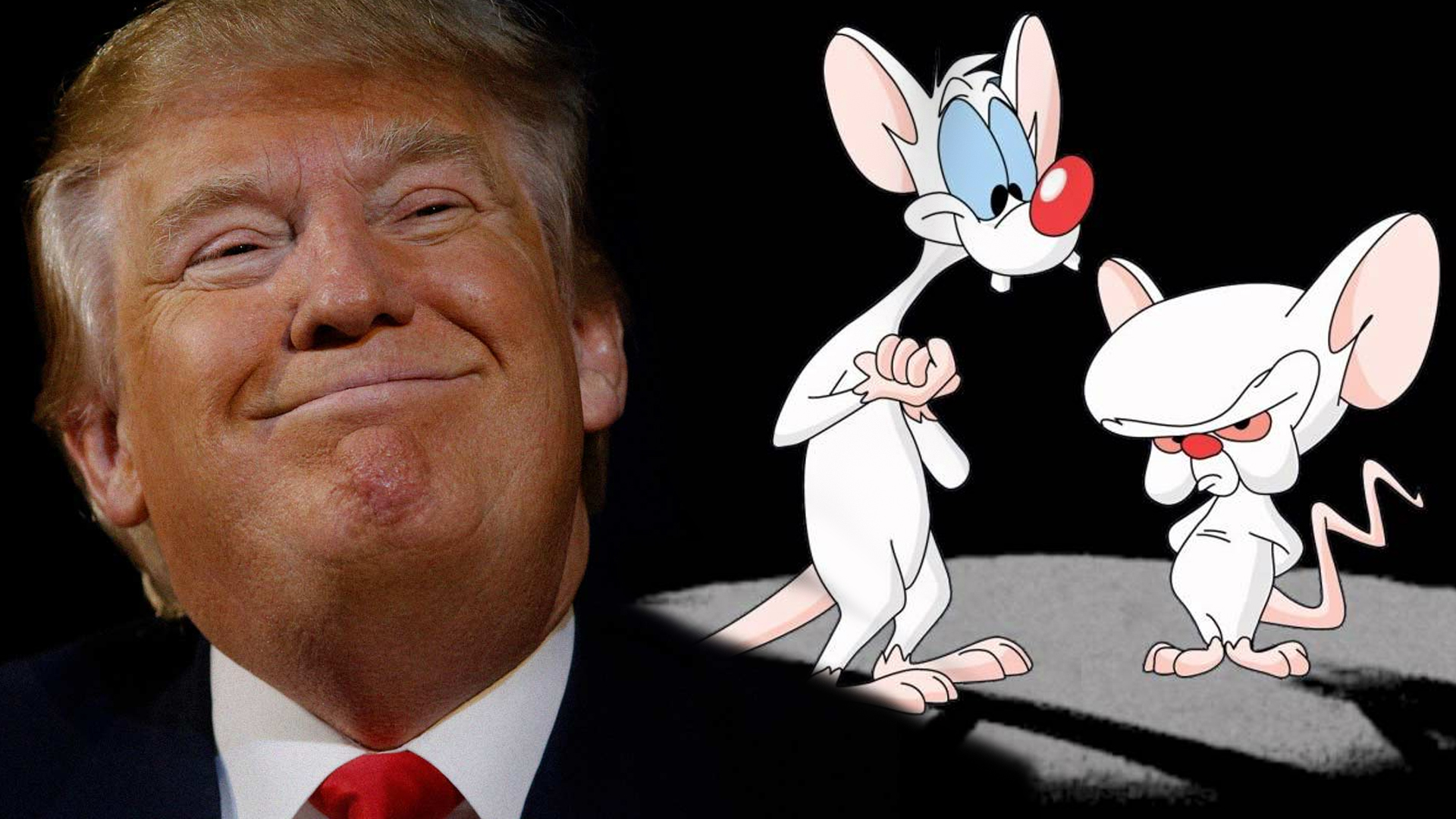 Donald Trump Tweet Read by Pinky and The Brain