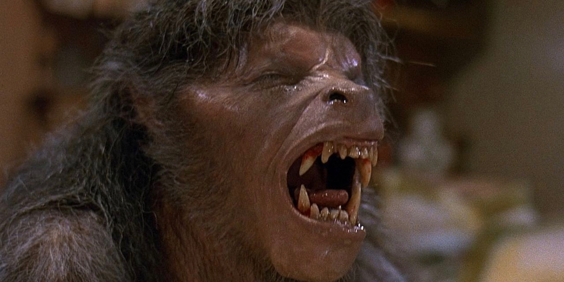 Transformation in An American Werewolf in London