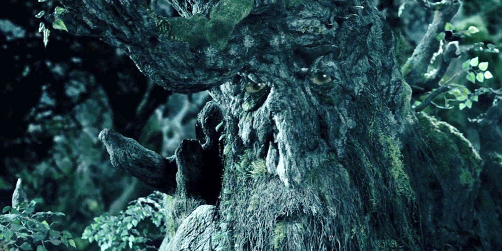 Lord of the Rings: 15 Things You Never Knew About Ents