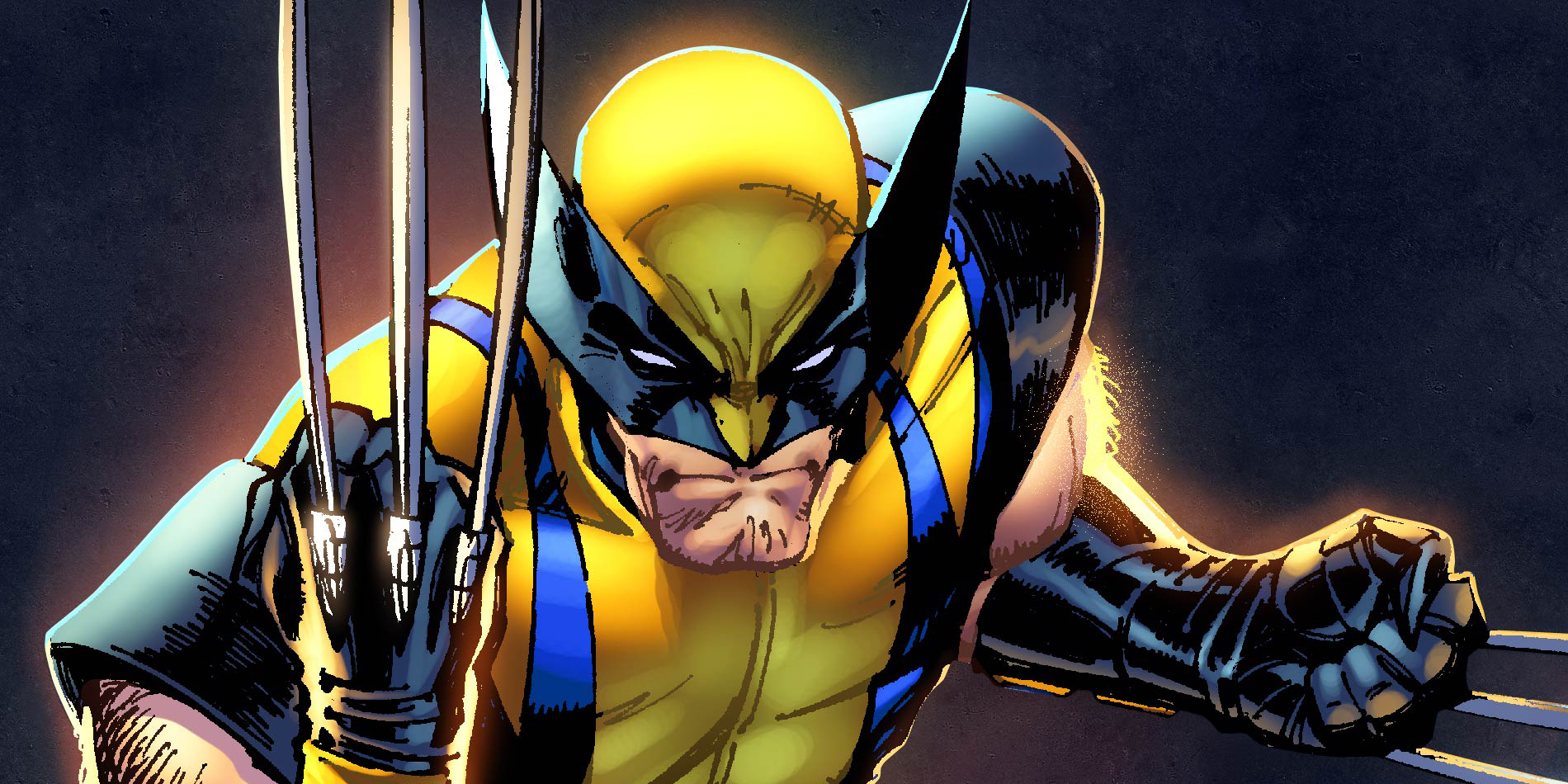 Facts you never knew about wolverine of the men