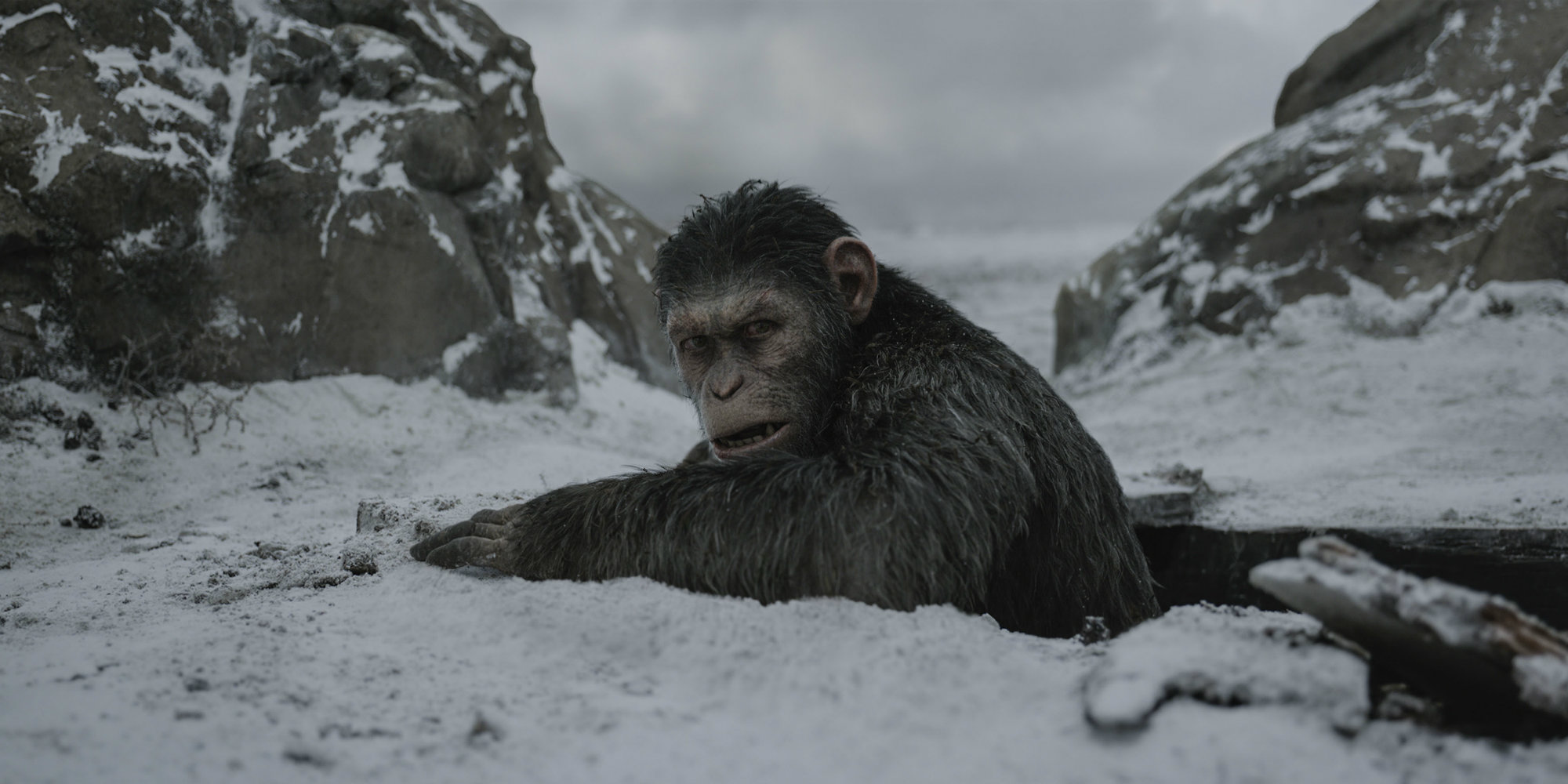 Planet of the Apes 3 Ends Caesar's Story | Screen Rant