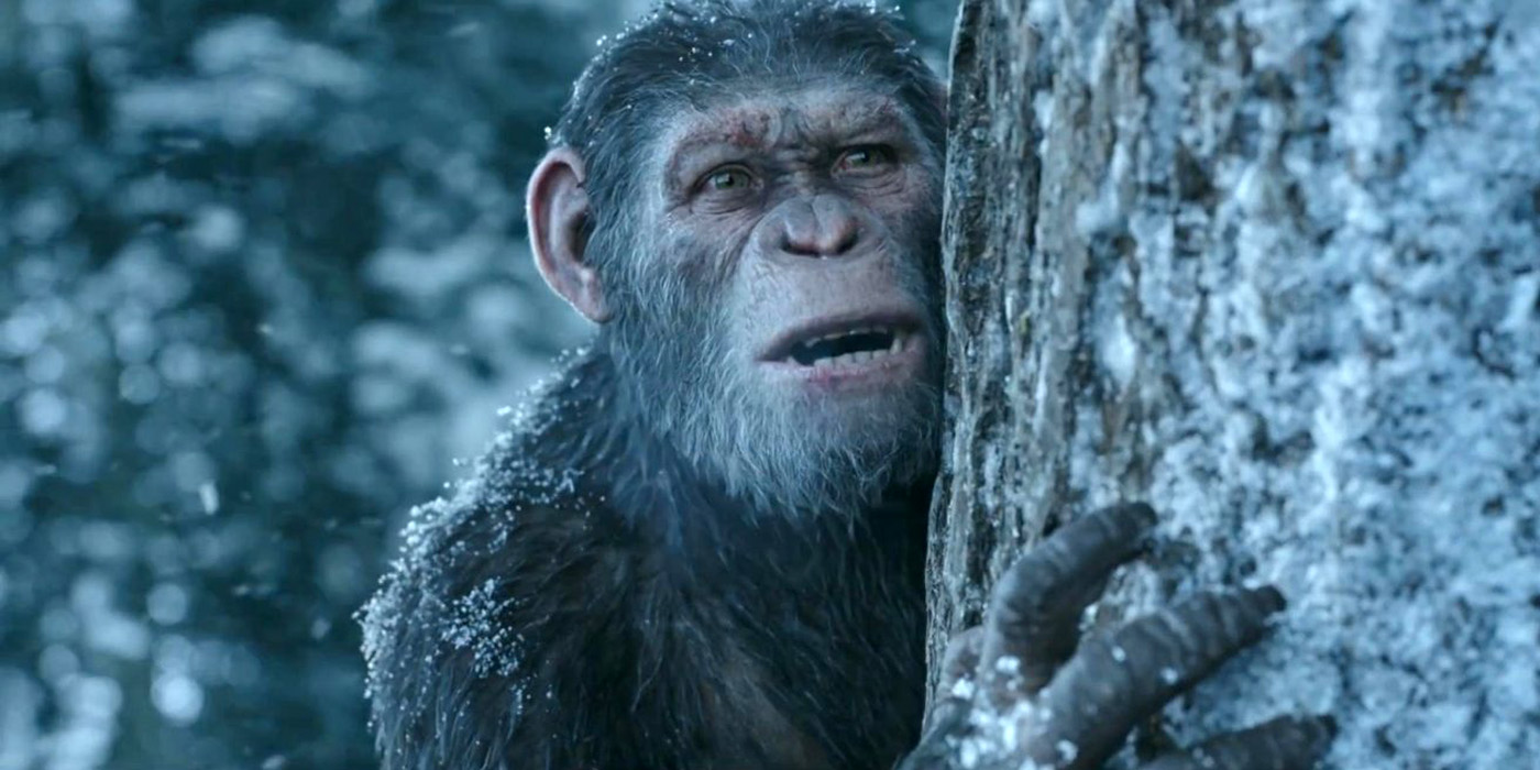 Andy Serkis Caesar Dawn Of The Planet Of The Apes
