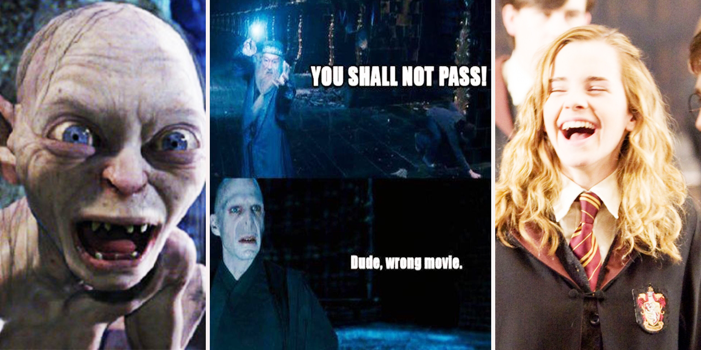 Harry Potter Lord Of The Rings Meme Quote