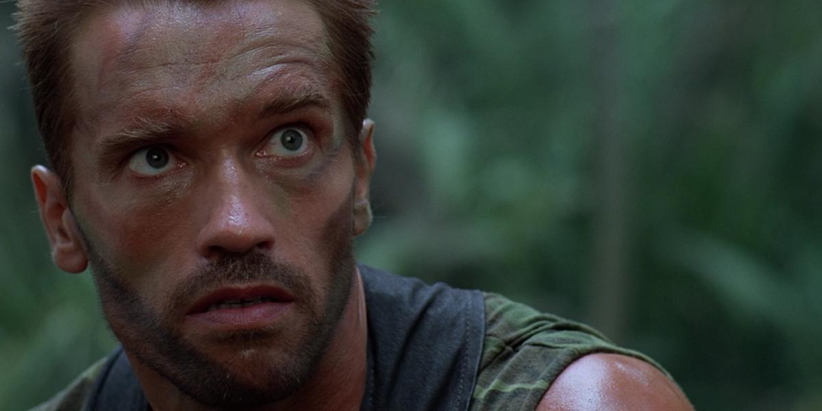 Arnold Schwarzenegger ... Arnold Schwarzenegger Net Worth 2017