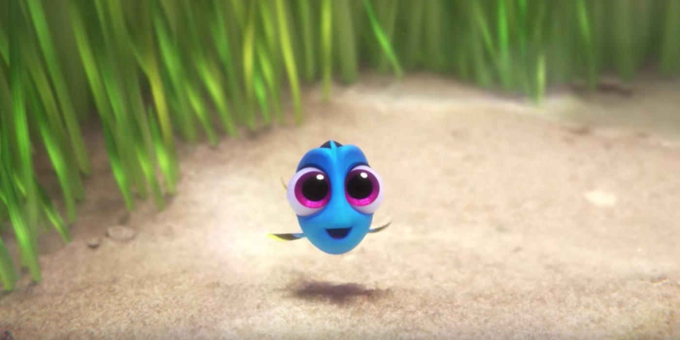 Finding dory pixar releases baby dory clip online for Picture of dory fish