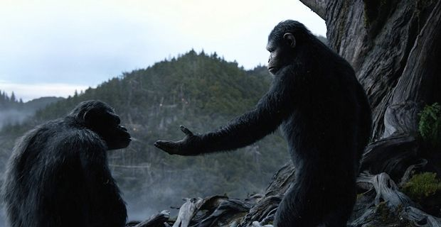 Caesar Andy Serkis and Koba Toby Kebbell in Dawn of the Planet of the Apes Dawn of the Planet of the Apes Review