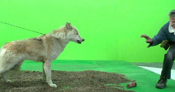 Direwolves in Game of Thrones Season 3 Game of Thrones Season 3 Visual Effects Reel & Deleted Scene