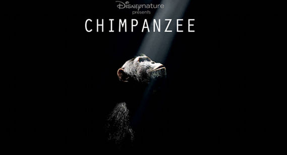 Disney Chimpanzee 2012 Screen Rants (Massive) 2012 Movie Preview