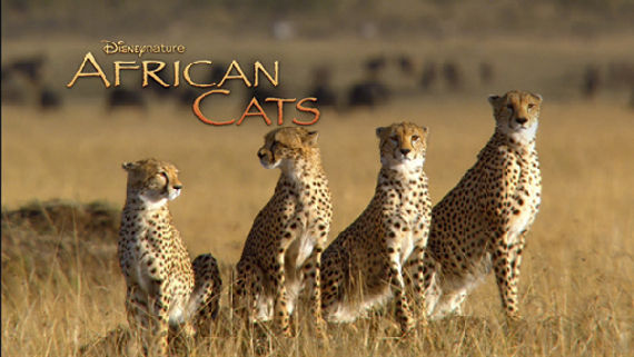 Disneynature African Cats Screen Rants (Massive) 2011 Movie Preview