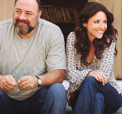 Enough Said starring James Gandolfini and Julia Louis-Dreyfus (2013)