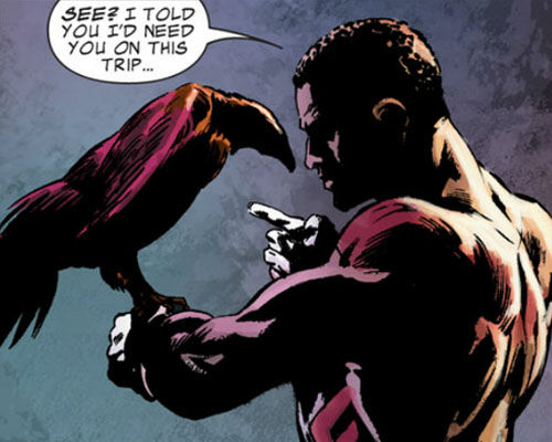 Falcon Redwing Marvel Comics Captain America 2: Will We See Falcons Pet & Toby Jones Arnim Zola?