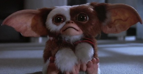Gremlins Gizmo 570x294 Goonies 2 and Gremlins Remake Fast Tracked by Warner Bros.