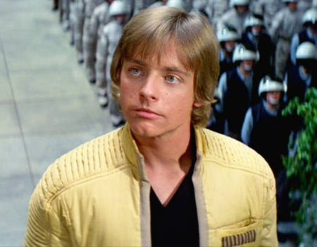 Luke Skywalker Hunger Games