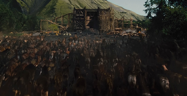 Noah Movie 2014 Ark Animals Noah Review