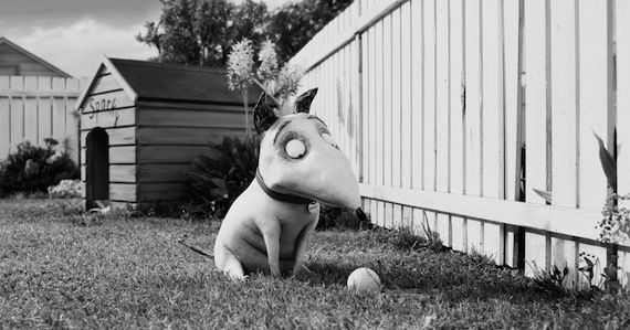 Oct 7 Box Office Wrap Up Frankenweenie Weekend Box Office Wrap Up: October 7, 2012