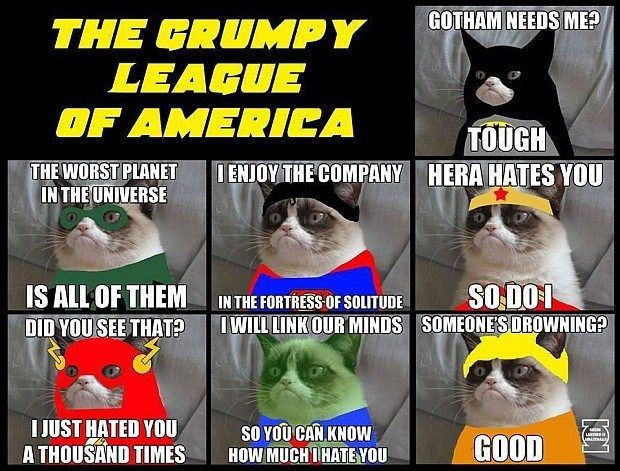 The Grumpy League Of America The Grumpy League Of America