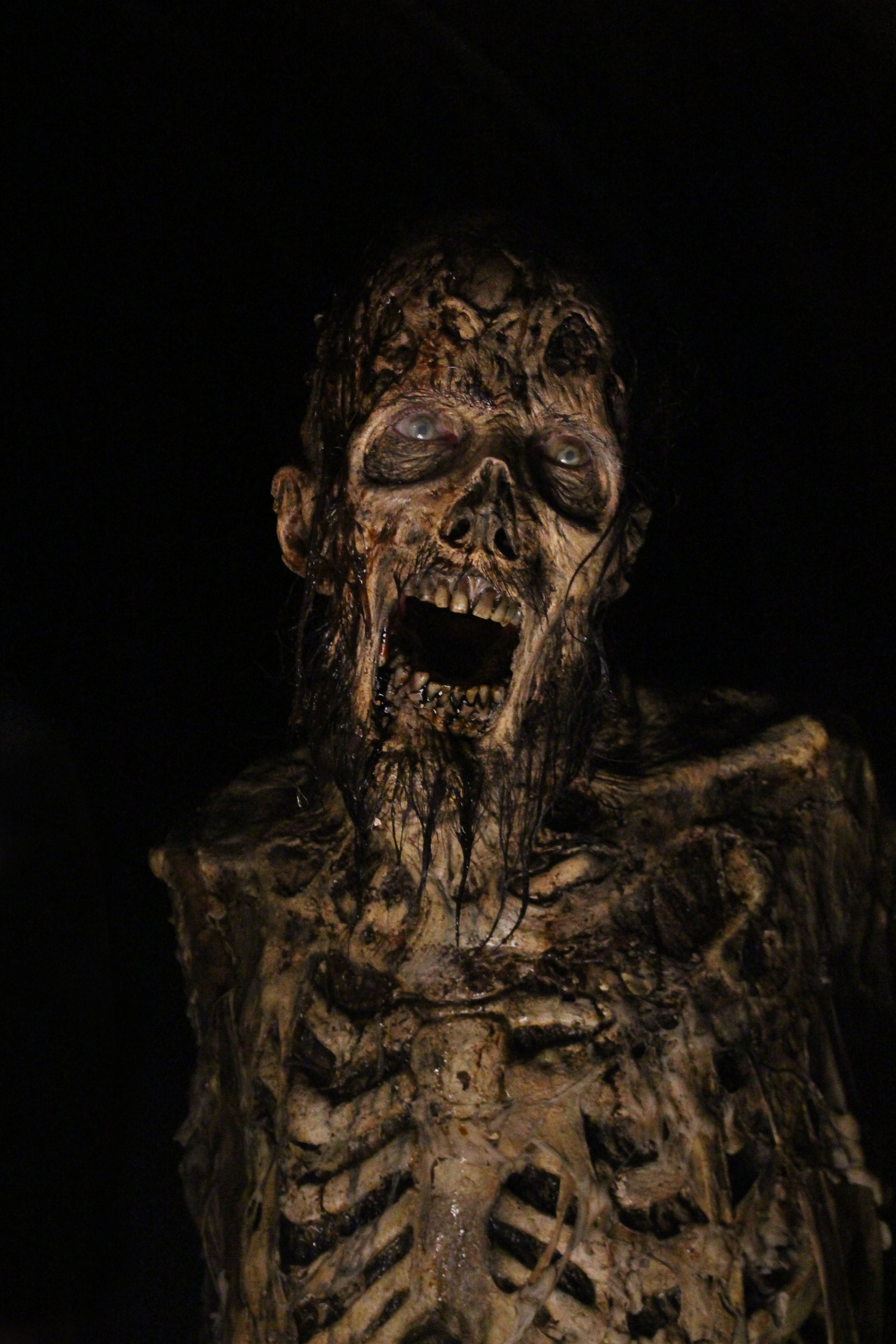 Final, Walking dead zombies