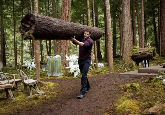 Twilight Breaking Dawn Emmet Lifts a Tree 570x397 Twilight Breaking Dawn   Emmet Lifts a Tree
