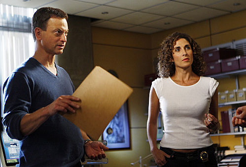 csi ny epilogue gary CSI: NY Premiere Recap, Review & Discussion