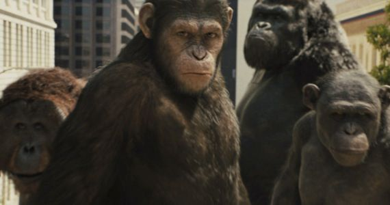 dawn planet apes director Judy Greer is Playing a Chimp in Dawn of the Planet of the Apes