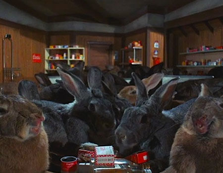 Domestic Rabbits from Night of the Lepus - 10 Badass Rabbits (That Aren't the Easter Bunny)