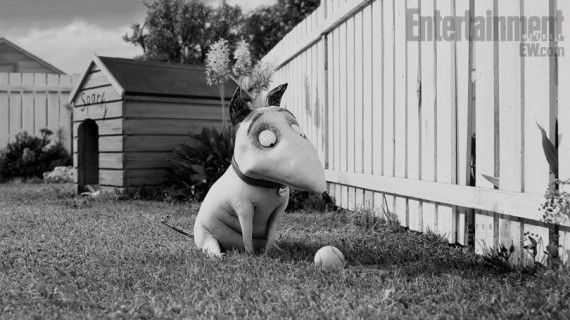 frankenweenie image 3 570x320 Screen Rants (Massive) 2012 Movie Preview