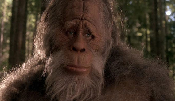 harry and the hendersons The Evolution of the Movie Ape