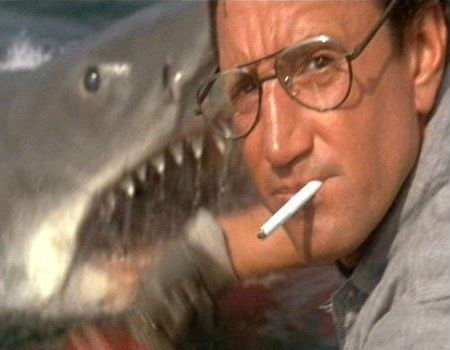 Roy Scheider as Police Chief Martin Brody in Jaws