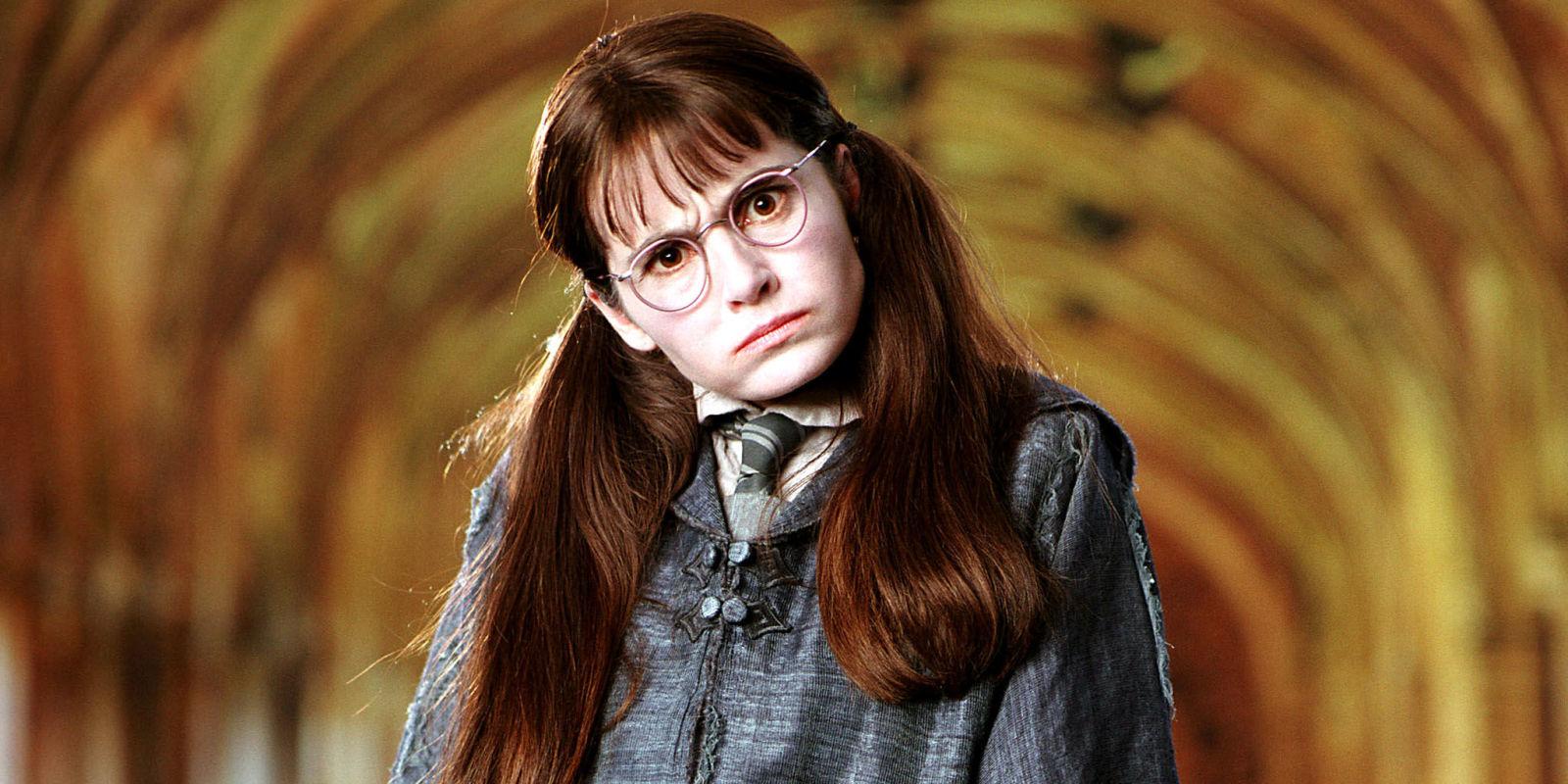 The 17 Craziest Harry Potter Fan Theories   ScreenRant