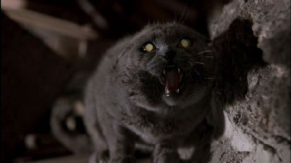 pet sematary remake Paramount Moving Forward With New Pet Sematary Movie
