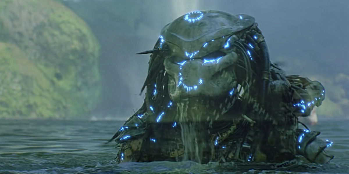 Image result for pic of predator
