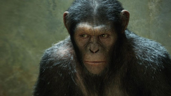 rise of the planet of the apes caesar andy serkis WETAs Live Chat Featuring New Rise of the Planet of the Apes Footage