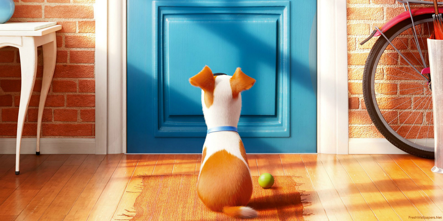 the secret life of pets 5 new clips tease animal adventure