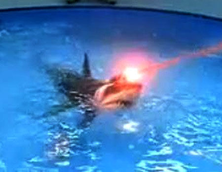 Sharks with frickin' lasers on their heads from Austin Powers: International Man of Mystery
