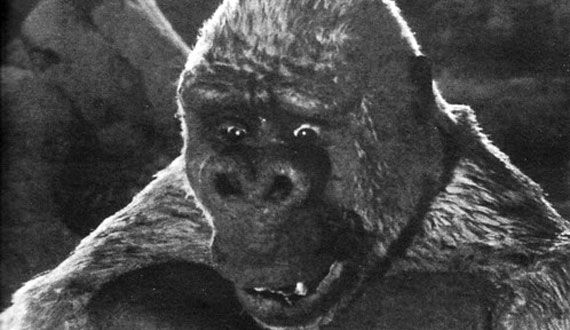 son of kong little kong The Evolution of the Movie Ape