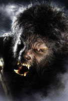The Wolf Man Benicio Del Toro